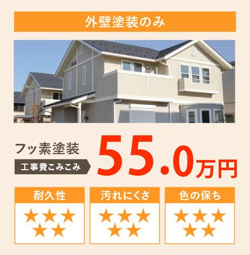 外壁塗装のみ フッ素塗装 工事費込み込み50.0万円